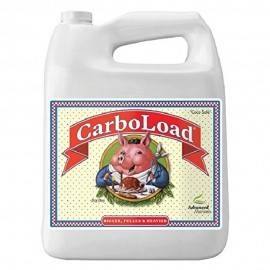 CarboLoad Liquid 5L