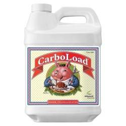 CarboLoad Liquid 10L