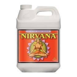 Nirvana 10L