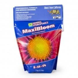 Maxi Bloom 1Kg