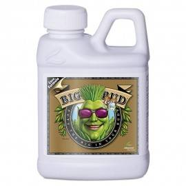 Big Bud Coco Liquid 250ml