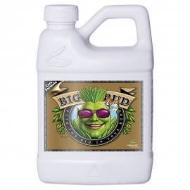 Big Bud Coco Liquid 500ml