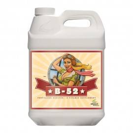 B-52 Fertilizer Booster 10L