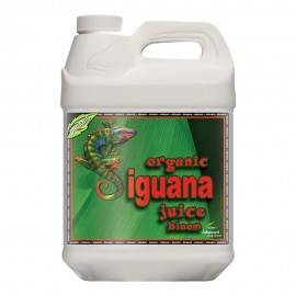 Organic Iguana Juice Bloom 10L