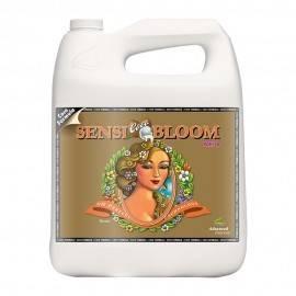 SensiBloom Coco 5L B