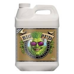 Big Bud Coco Liquid 10L