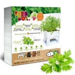 SeedBox Cultívame perejil Eco