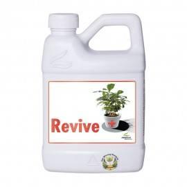 Revive 500ml