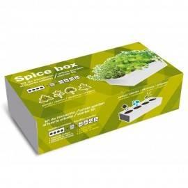 SeedBox SpiceBox