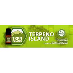 Terpenos terp island 0.25L